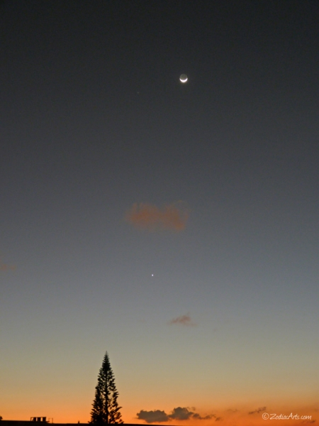 20150122-1852-P1160504-Moon1-2-Venus-Mars-Tree-Sky