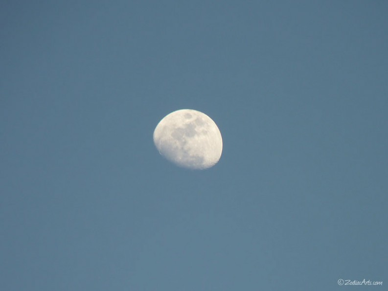 P1260545-Moon4