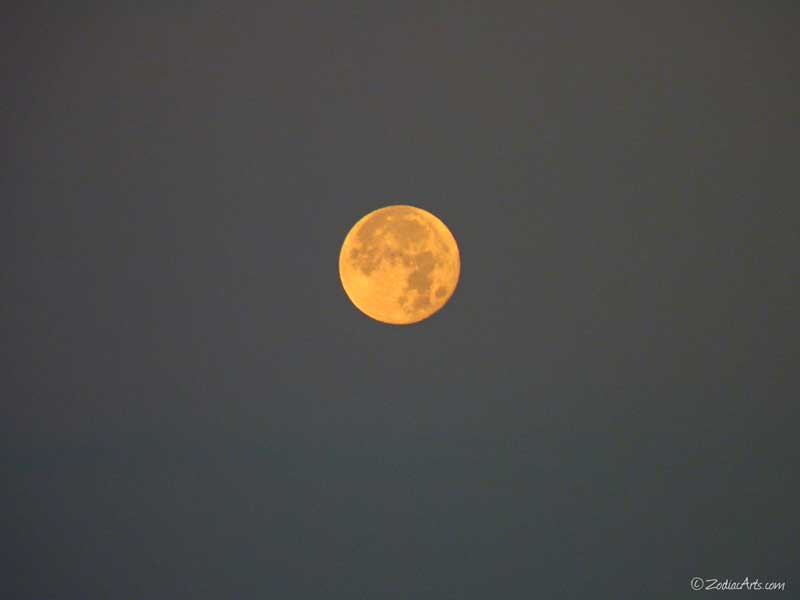 P1260826-Moon5