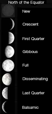 Lunar Cycles & the 8 Phases | Zodiac Arts | Zodiac Arts