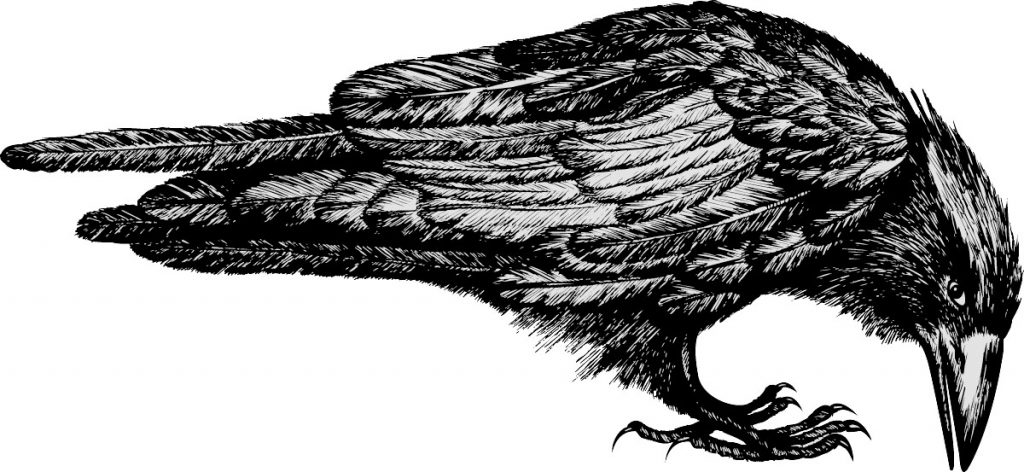 illustration [Converted].eps