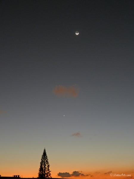 20150122-1852-P1160504-Moon1-2-Venus-Mars-Tree-Sky
