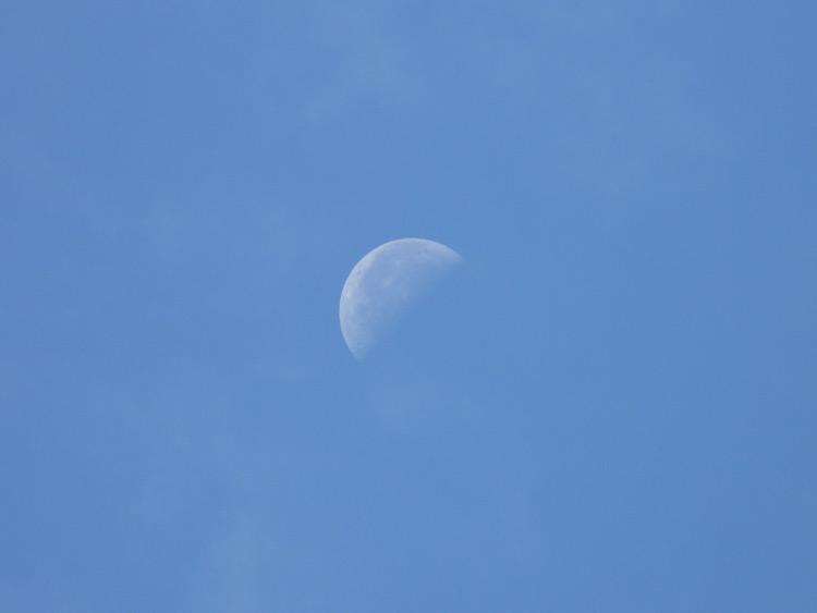 Moon7-20131125-0938-P1110379